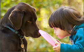 pet loss support for kids