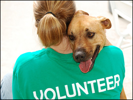 Pet Loss Outreach Programs